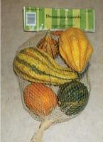 Pumpkins & Gourds & Corn Husks