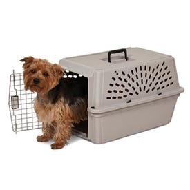 Petmate Small Pet Carrier