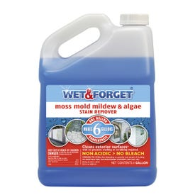 WET & FORGET 800006 Outdoor Cleaner, 1 gal, Liquid, Mild Sweet, Clear Blue