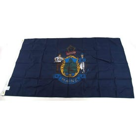 Valley Forge ME3 State Flag, Maine, 3 ft W, 5 ft H, Nylon