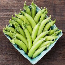 High Mowing Organic Seeds 2762-A Cascadia Snap Pea Seed