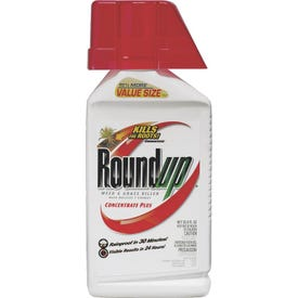 Roundup 5100610 Weed and Grass Killer Concentrate, Liquid, Pour Application, 37 oz Bottle