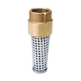 WATER SOURCE TFV100NL-RM Foot Valve, 1 in Connection, Female Thread, 200 psi Pressure, Brass Body