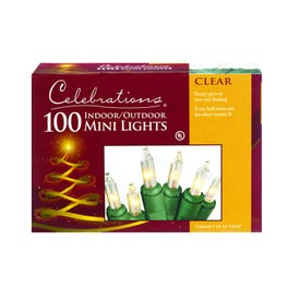 Celebrations Incandescent Micro/5mm Clear/Warm White 100 String Lights 20.63' Green Wire Electric
