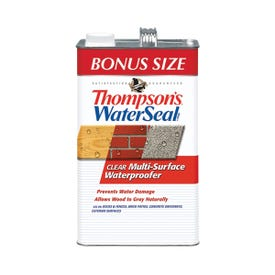 Thompson's WaterSeal TH.024111-03 Waterproofer, Clear, 1.2 gal, Can