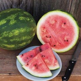High Mowing Organic Seeds Crimson Sweet Watermelon Seed