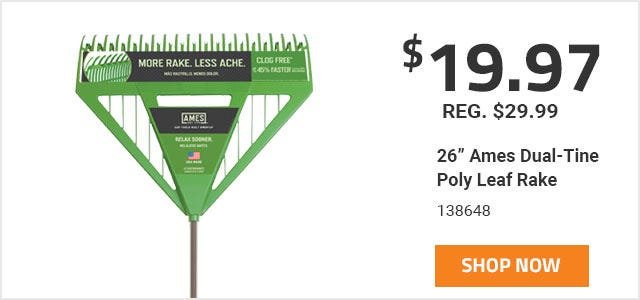 Ames 26 Inch Leaf Rake