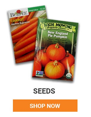 We have a variety of seeds online and in store. We have Burpee Seeds at all of our store locations.