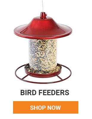 We have all your bird feeding needs. Shop Bird feeders now.