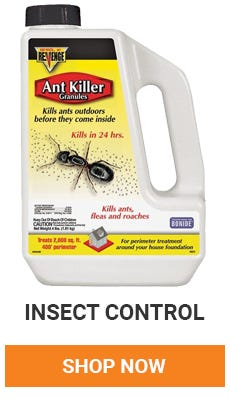 Got insects in your home? We have what you need to get rid of them. Shop Insect Control.