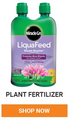 Feed your plants all summer long. Shop now.