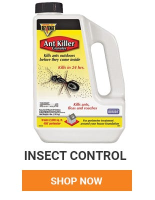 Got insects in your house? We have everything you need to get rid of them. Shop Now.