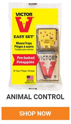 Get rid of those pesty critters. We have everything you need to get rid of unwanted house guest. Shop Now.