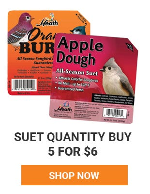 Bird Suet quantity buy on select items. Buy 5 for 6 dollars. Shop now